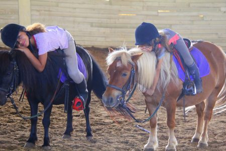 stages équitation sports gard (11)