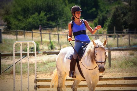 stages équitation sports gard (3)